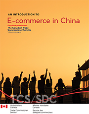 An Introduction to E-Commerce in China (PDF version)